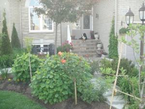 Edmonton Home Pros LandscapingTips