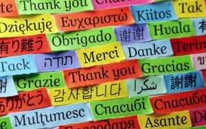 Edmonton Bilingual Schools